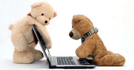 bears-computer